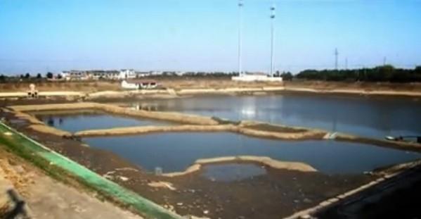 200多亩鱼塘